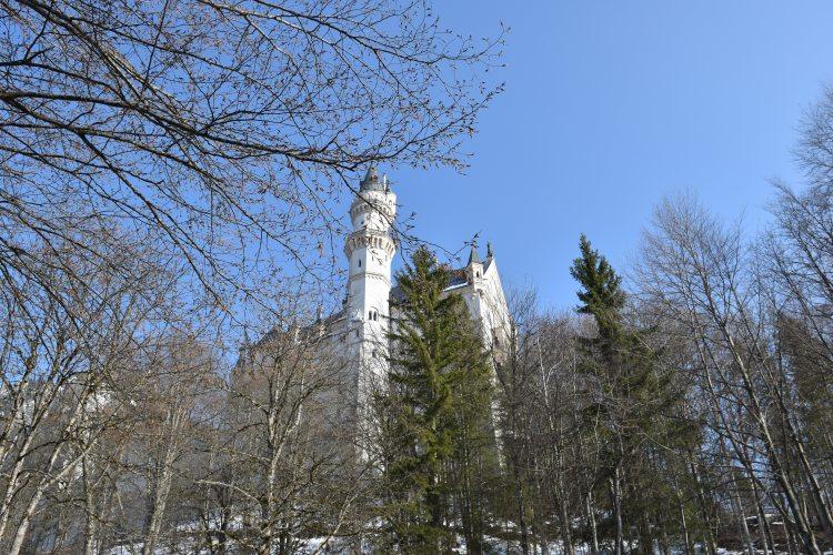 Neuschwanstein Castle 17