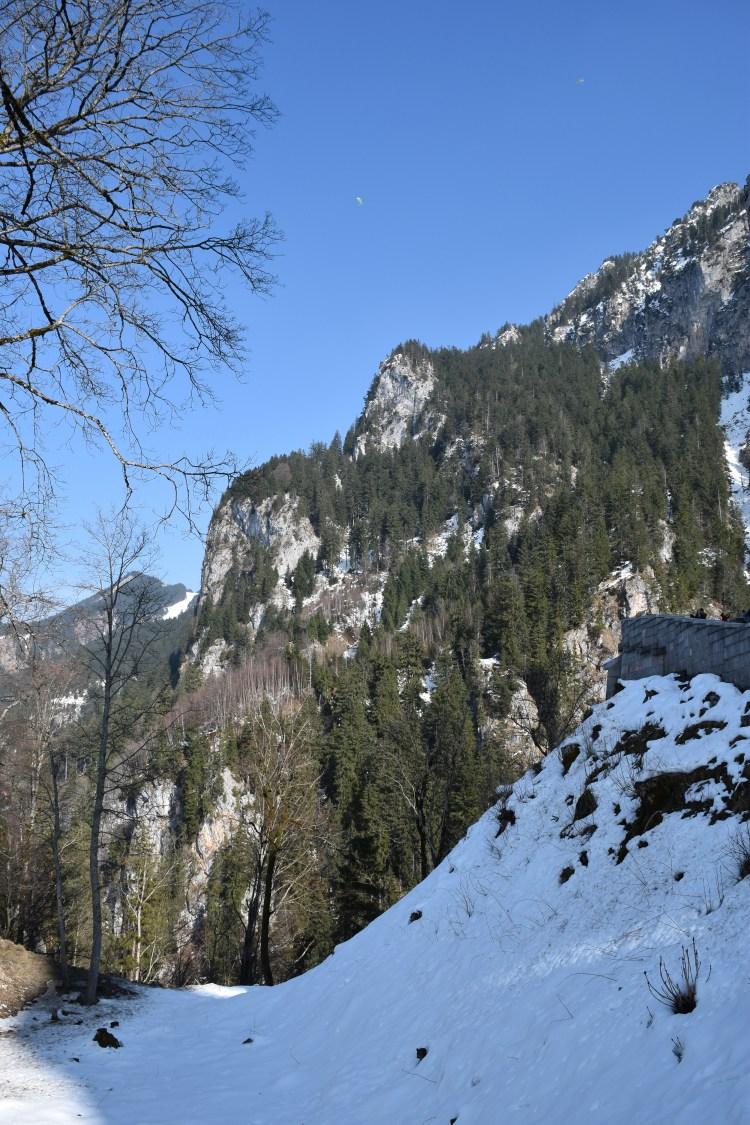 Neuschwanstein Castle 21