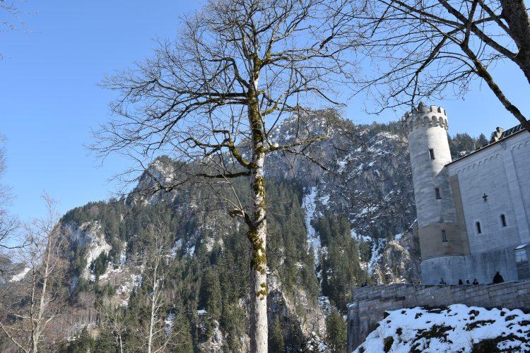 Neuschwanstein Castle 52