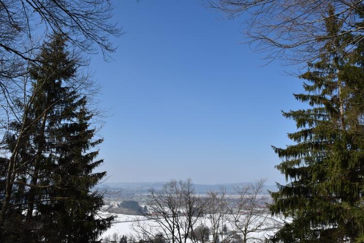 Neuschwanstein Castle 55