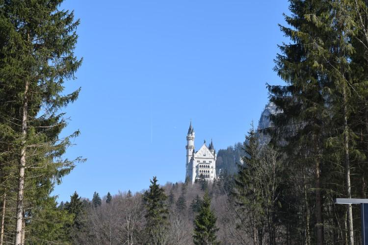 Neuschwanstein Castle 76