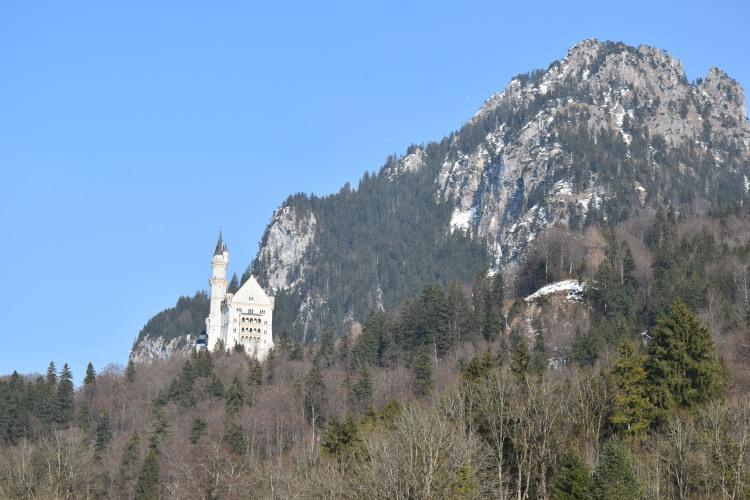 Neuschwanstein Castle 8