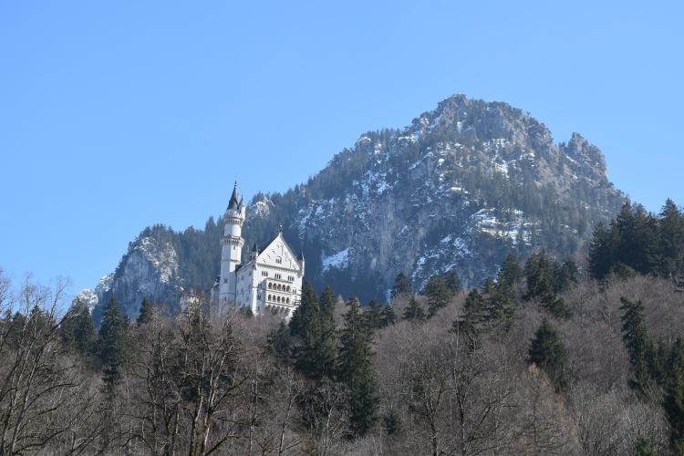 Neuschwanstein Castle 82