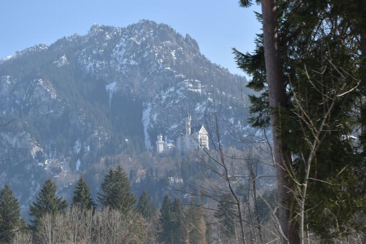 Neuschwanstein Castle 83