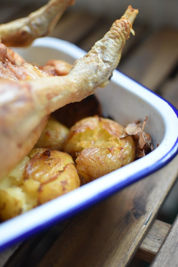 One Pot Lemon Roast Chicken and Potatoes 4