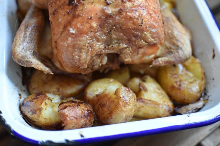 One Pot Lemon Roast Chicken and Potatoes 7